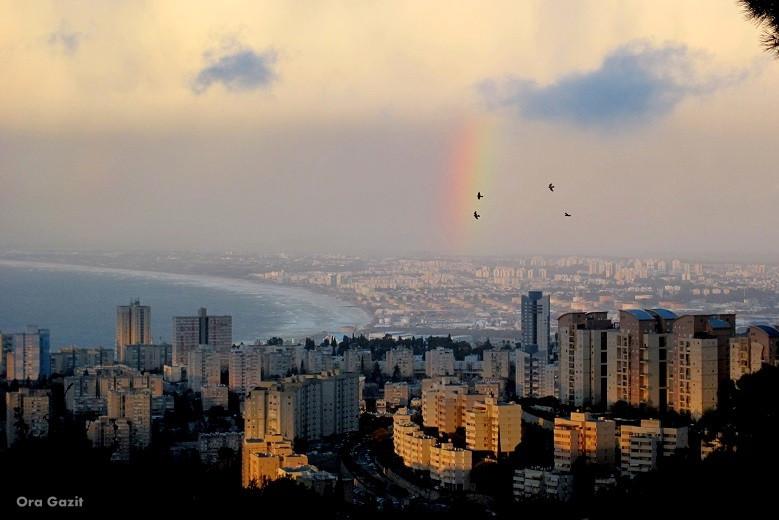 תצפית על מפרץ חיפה - שביל חיפה - טרק - טיול בחיפה