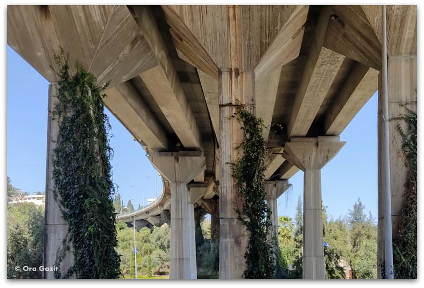 גשר גדוד 22 - שכונת חליסה - שמות רחובות בחיפה - טיול בחיפה