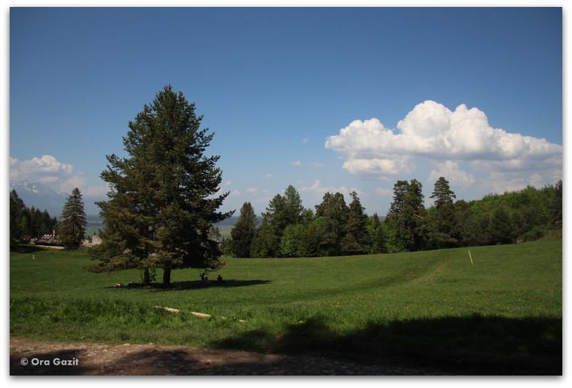 אחו ירוק - טרק - גן העדן הסלובקי - סלובקיה