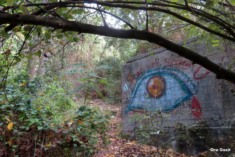 קיר מצוייר בנחל אחוזה - שביל חיפה - טרק - טיול בחיפה