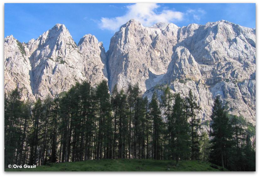 הרים ויער, סלובניה