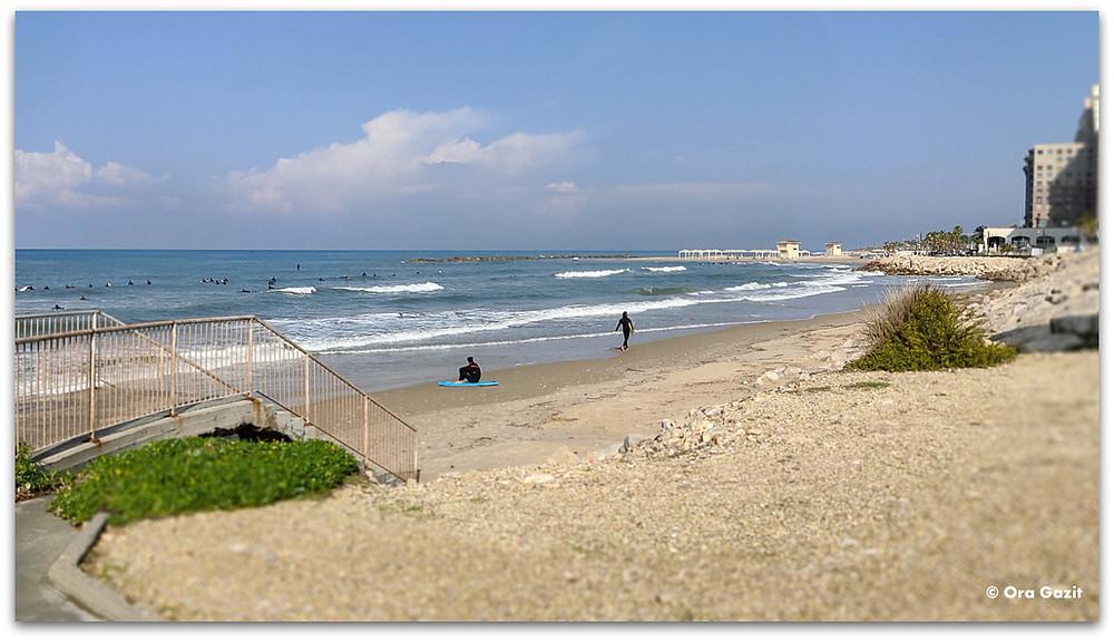חופי חיפה - דרך נוף חיפה - תצפיות בחיפה