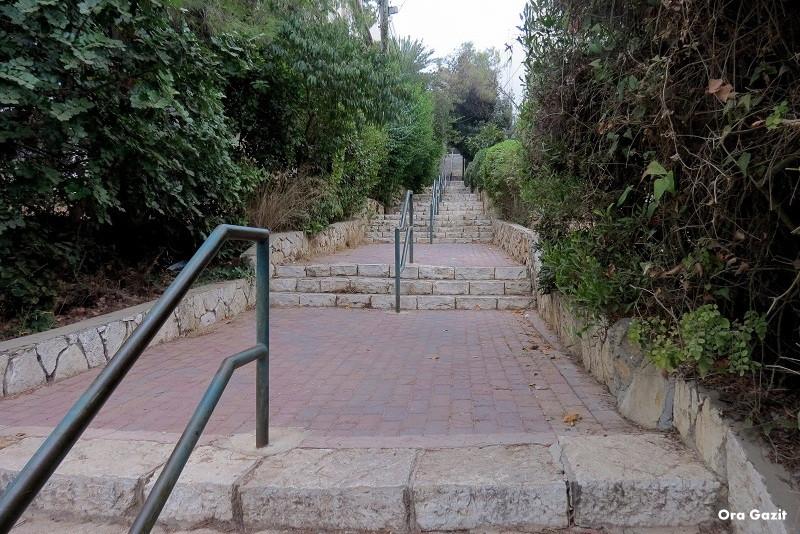 מדרגות - שביל חיפה - טרק - טיול בחיפה