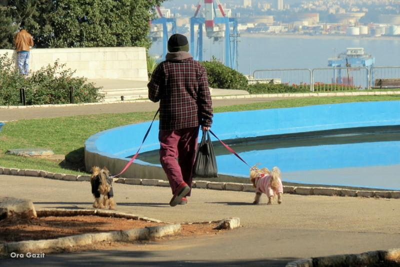 אשה עם כלבים - שביל חיפה - טרק - טיול בחיפה