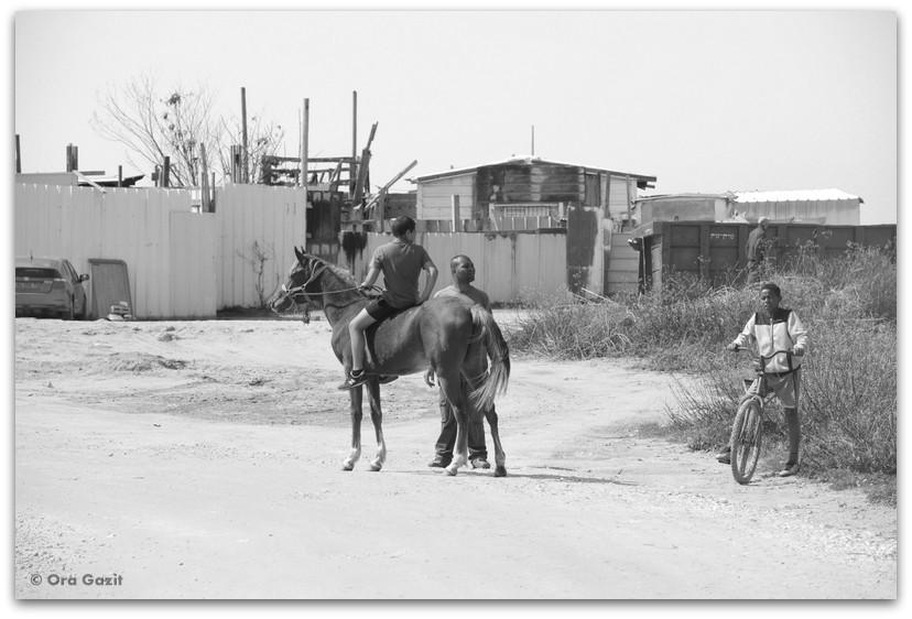 ילד רוכב על סוס- ג'סר א זרקא