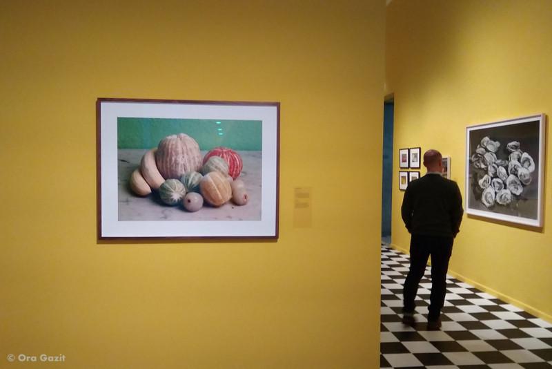 צילום אוכל- תערוכת צילום - מוזיאונים באמסטרדם - אמסטרדם המלצות - אמסטרדם בחורף