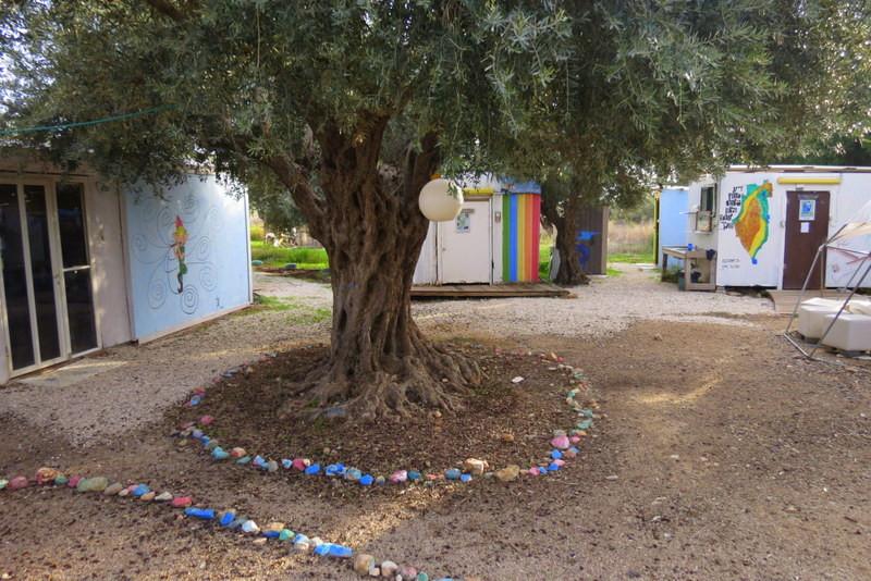 מתחם השביליסטים - התנדבות - חאן יותם
