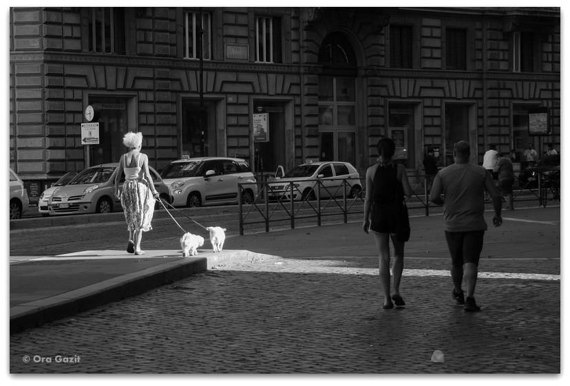 אשה עם זוג כלבים - תמונות מספרות סיפור – טיפים לצילום – איך לצלם טוב