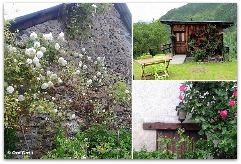 בתים כפריים ופרחים - טרק - סובב מון בלאן