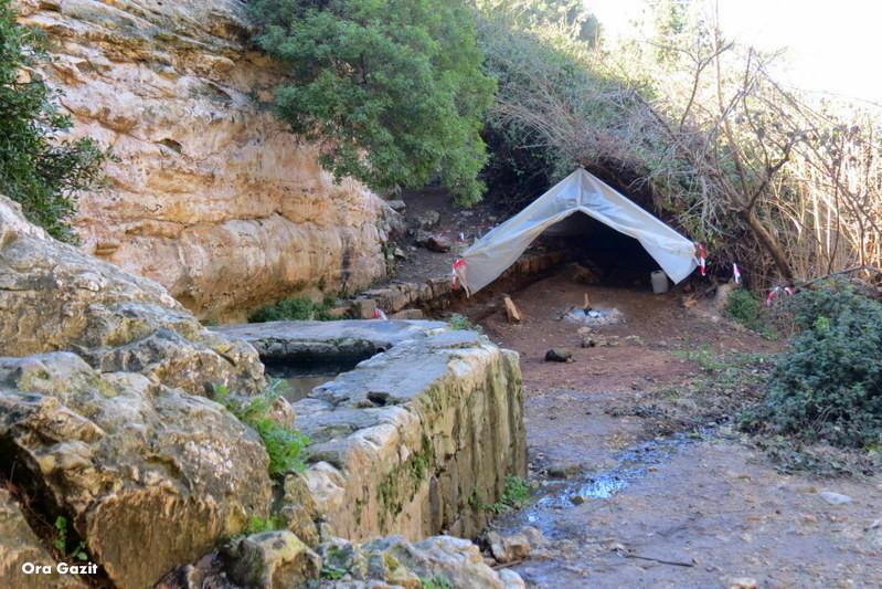 עין משוטטים - נחל שיח - שביל חיפה - טרק - טיול בחיפה