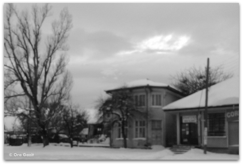 בתים ועצים - מלחמת יום כיפור