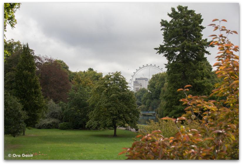 פארק ירוק - לונדון - יומן מסע