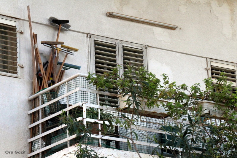 מטאטאים במרפסת - שביל חיפה - טרק - טיול בחיפה