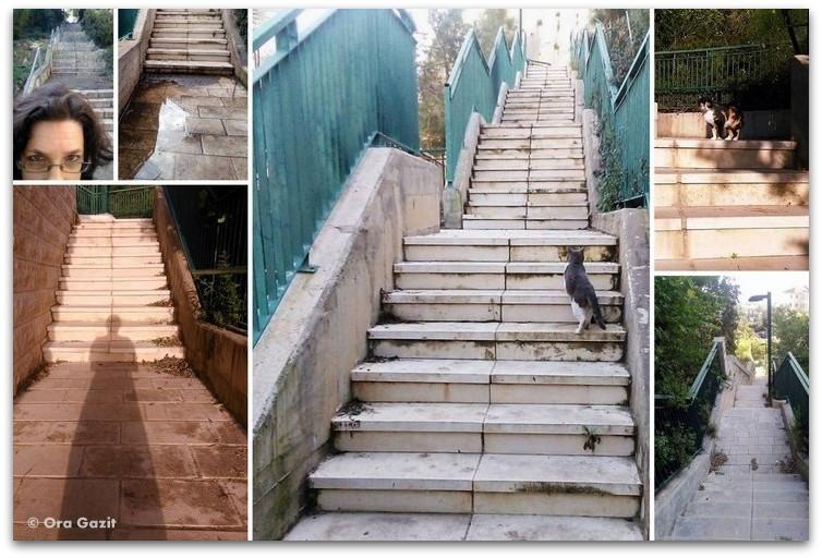 אימון מדרגות - טרק - סובב מון בלאן