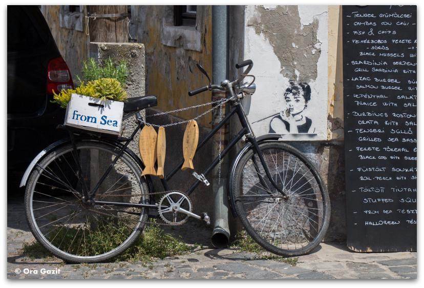 אופניים - סנטאנדרה