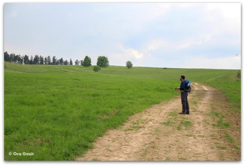 מטייל בשדה - טרק - גן העדן הסלובקי - סלובקיה