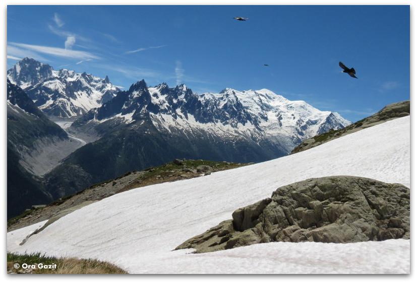 האלפים הצרפתיים - טרק - סובב מון בלאן - יומן מסע