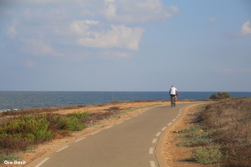 איש על אופניים - שמורת שקמונה - שביל חיפה - טרק - טיול בחיפה