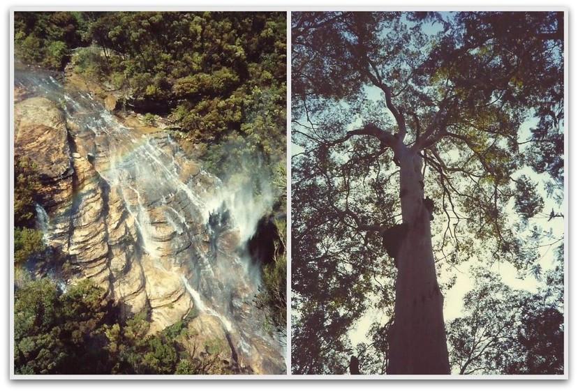 מפל מים - טרק - טיול לאוסטרליה
