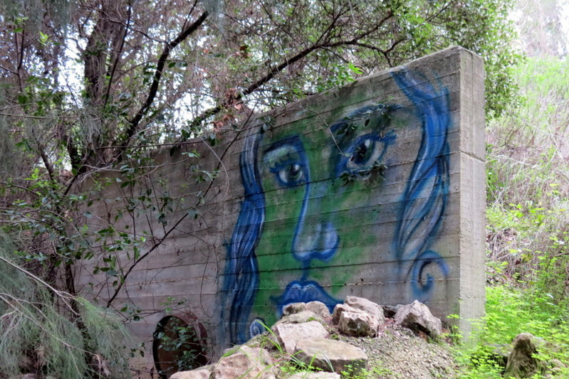 קיר עם גרפיטי - שביל חיפה - טרק - טיול בחיפה