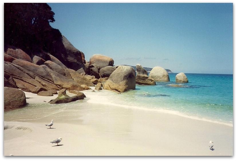 חוף מסולע - טרק - טיול באוסטרליה