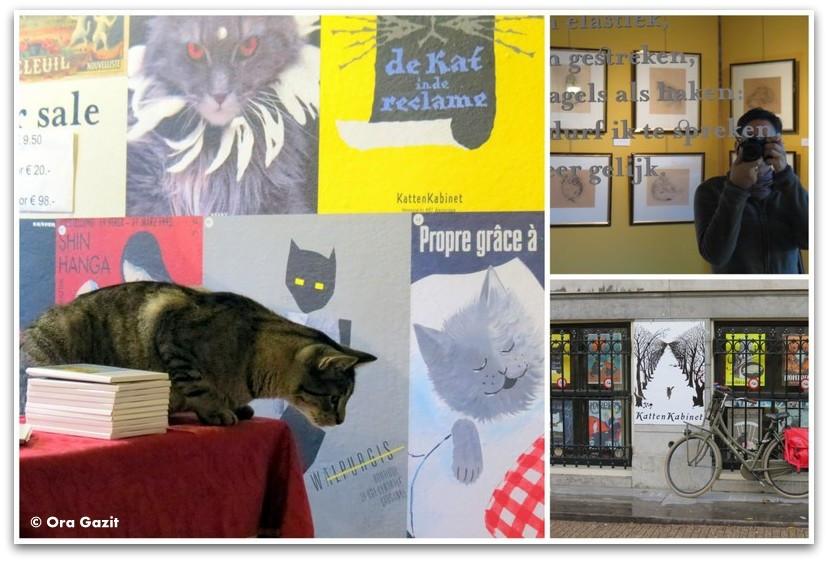 חתול במוזיאון החתולים, אמסטרדם