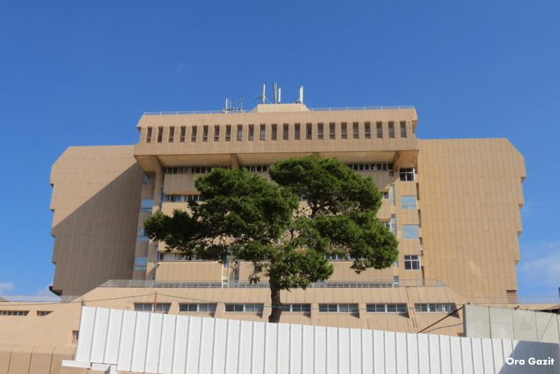 בית חולים כרמל - שביל חיפה - טרק - טיול בחיפה
