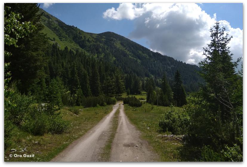 דרך רחבה - טרק הרי רילה - טרקים בבולגריה - יומן מסע