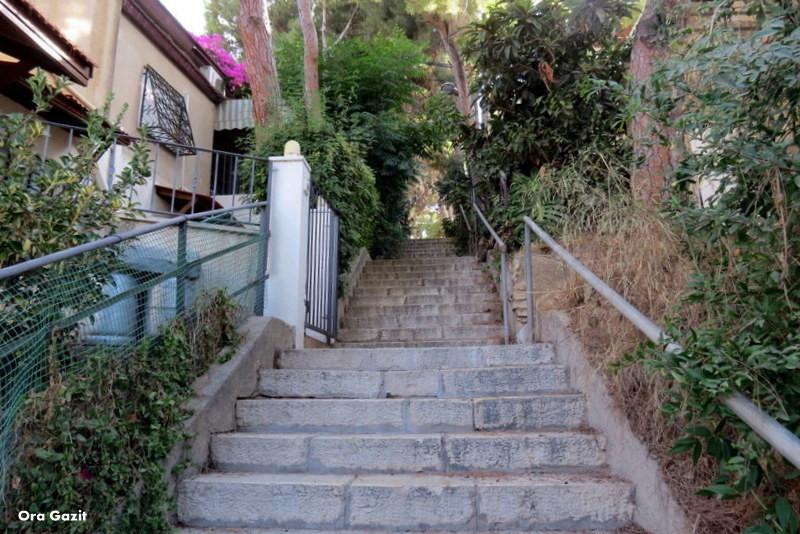 מדרגות - רמות רמז - שביל חיפה - טרק - טיול בחיפה