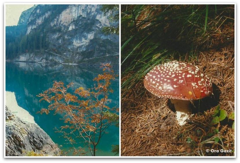 פטריה ואגם, דולומיטים, איטליה