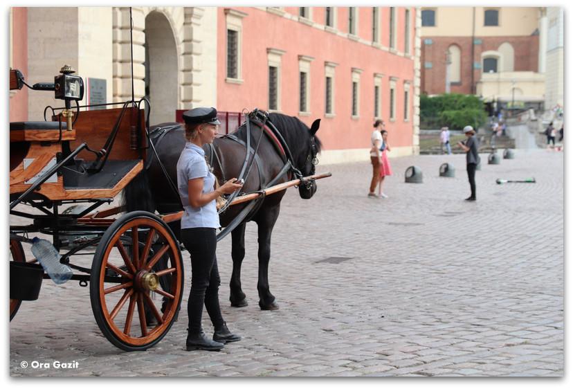 מרכבה בעיר העתיקה ורשה - טיול בורשה - מה לעשות בורשה