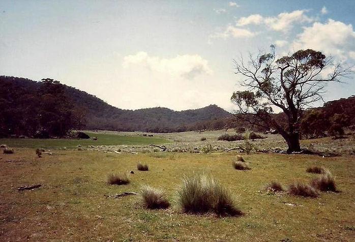 נוף, אוסטרליה - יומן מסע - טיול אחרי צבא