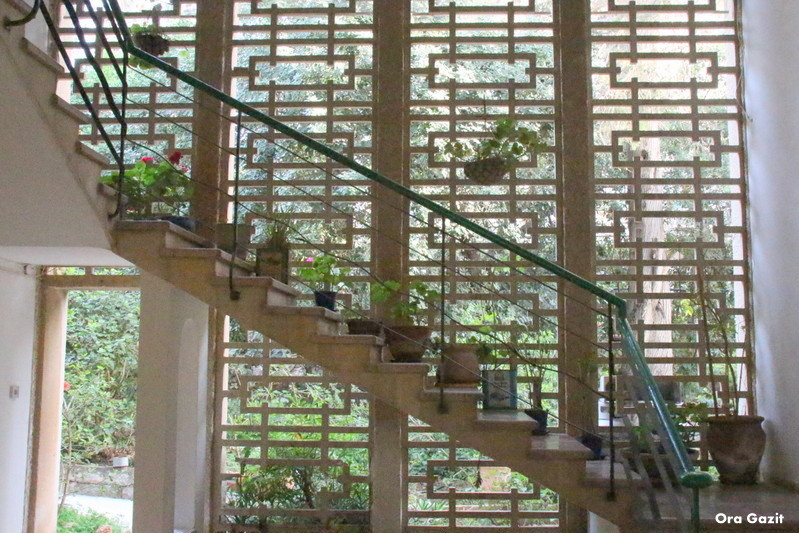 חדר מדרגות מיוחד - שביל חיפה - טרק - טיול בחיפה