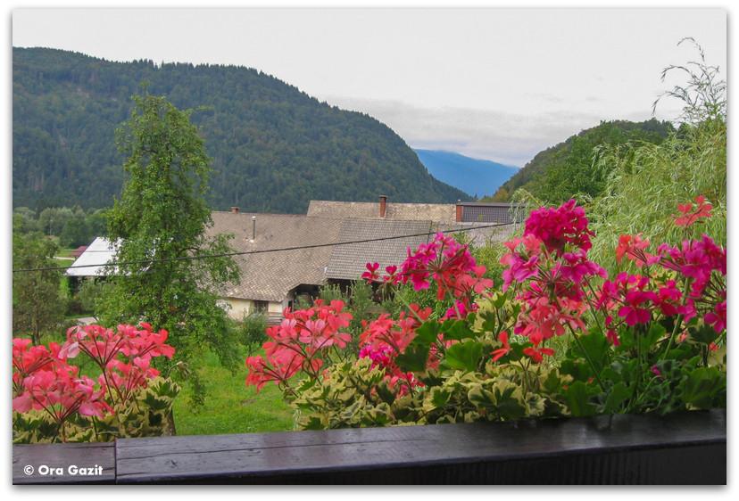 גרניום ונוף הרים, סלובניה
