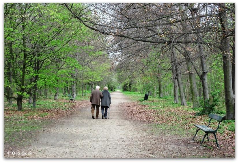 זוג קשישים, יער בולון, פריז