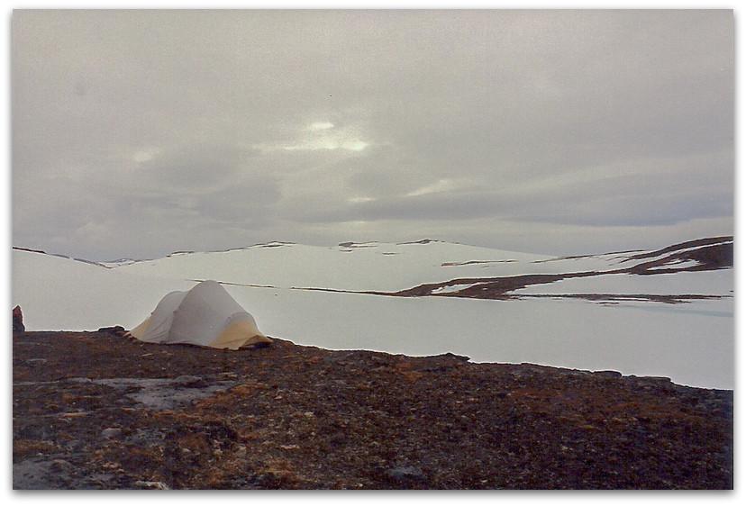 האוהל תקוע בשלג - טרק - שבדיה