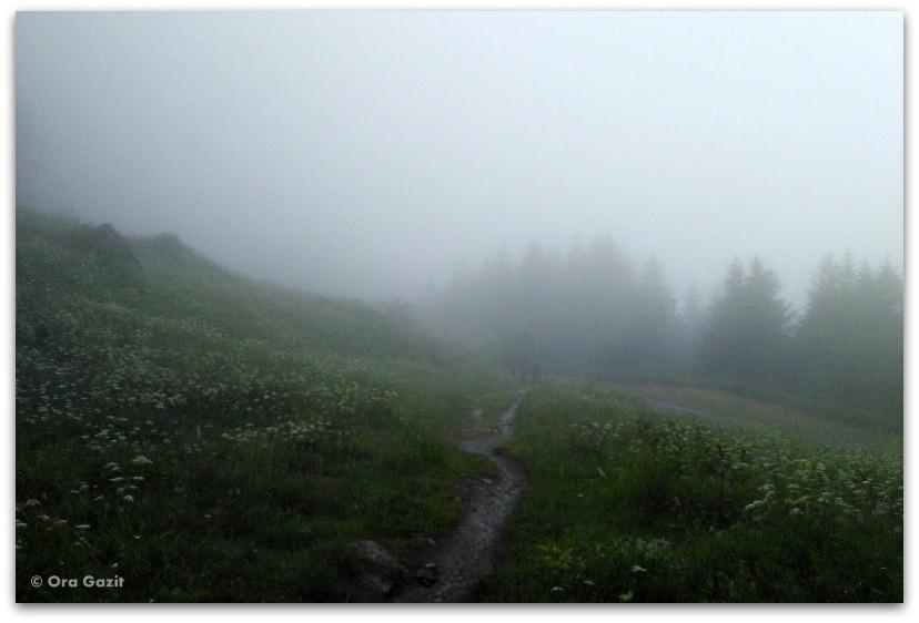 דרך בערפל - טרק - סובב מון בלאן - יומן מסע