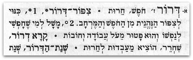 דרור הגדרה מילונית - שמות רחובות בחיפה - טיול בחיפה