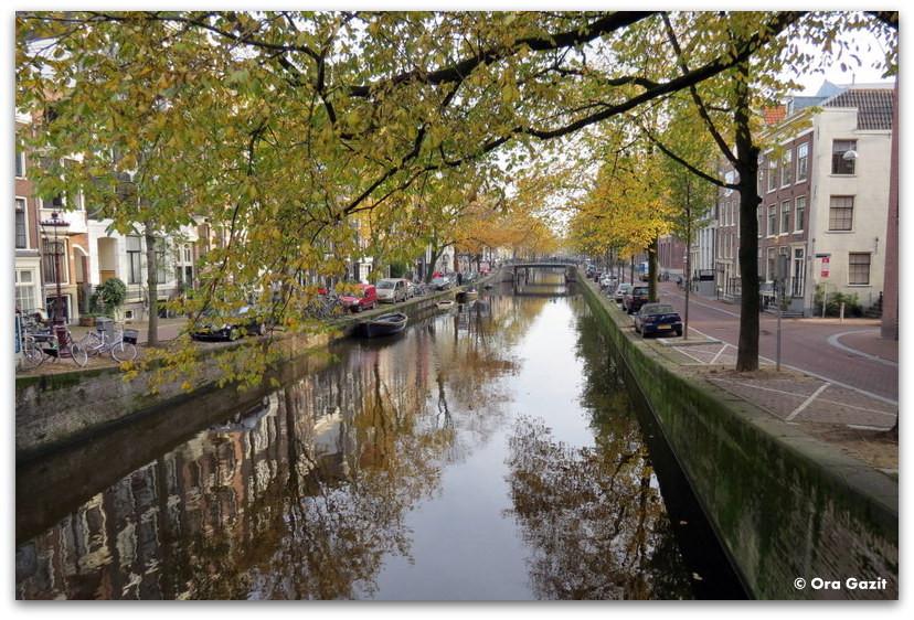 תעלה, שלכת, אמסטרדם
