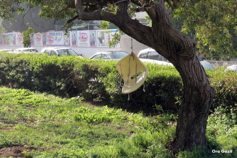 נדנדה תלויה על עץ - נווה שאנן - שביל חיפה - טרק - טיול בחיפה