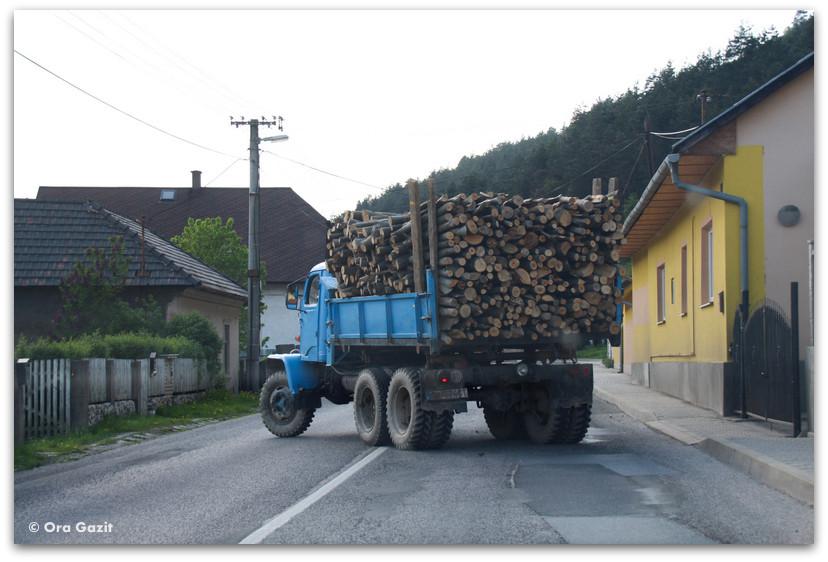 משאית עמוסה בולי עץ - סלובקיה