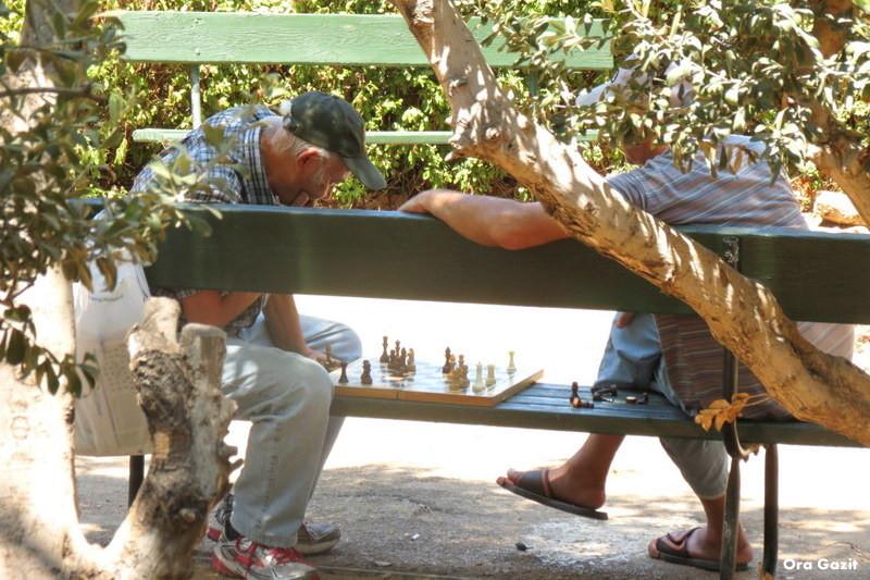 שחקני שחמט - הדר - שביל חיפה - טרק - טיול בחיפה