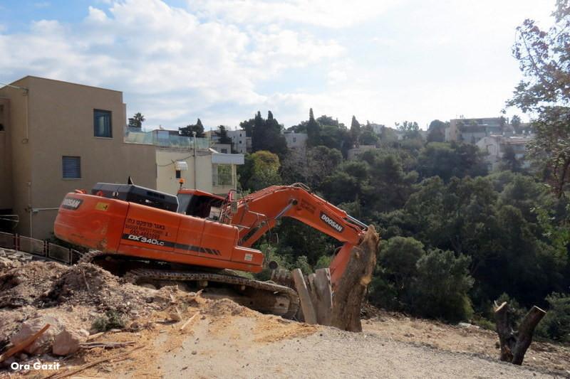 דחפור - שביל חיפה - טרק - טיול בחיפה