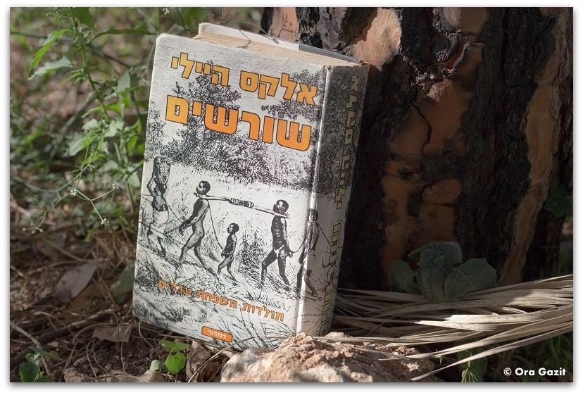 ספר - שורשים - המלצה על ספר