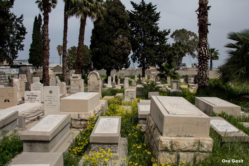 בית הקברות היהודי הישן של חיפה - שביל חיפה - טרק - טיול בחיפה
