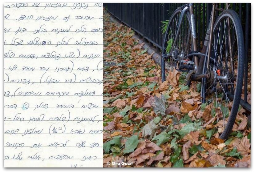 אופניים - לונדון - יומן מסע