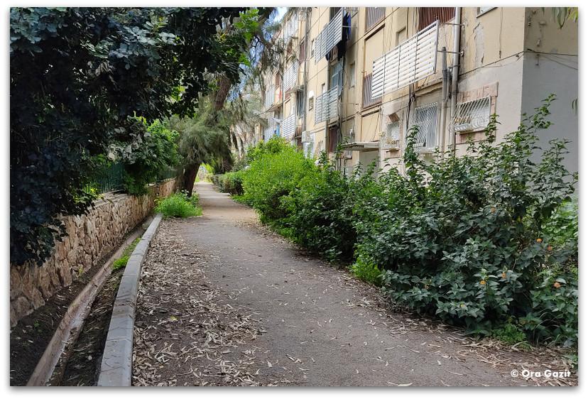 שביל - רחובות בקרית אליעזר - שמות רחובות בחיפה - טיול בחיפה