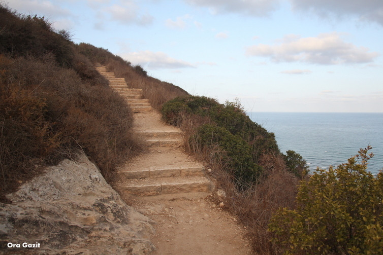 מדרגות בדרך לסטלה מאריס - שביל חיפה - טרק - טיול בחיפה