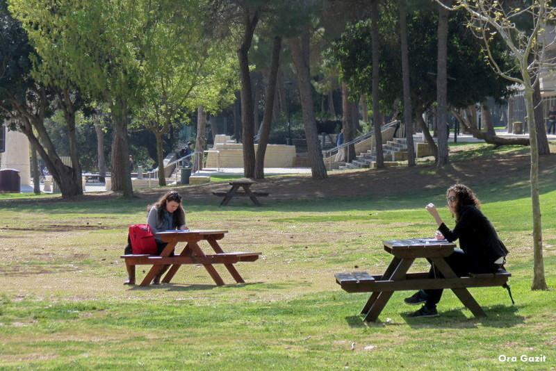סטודנטיות על הדשא - הטכניון - שביל חיפה- טרק - טיול בחיפה