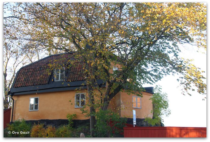 בית ועץ בשלכת - שטוקהולם